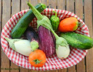 varias hortalizas