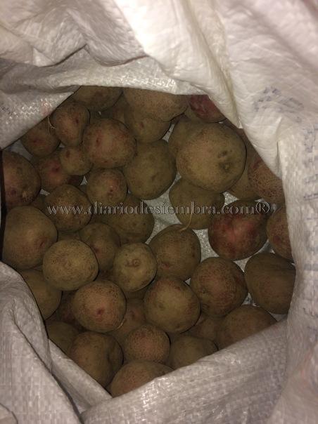 patatas-tempranas-saco-9-2-17